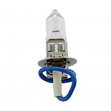 Halogen 12V/55W Bulb