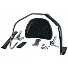 GL1200 Driver Backrest